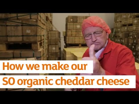 SO organic Cheddar - A curds eye view of how we make our Cheddar cheese | Sainsbury's