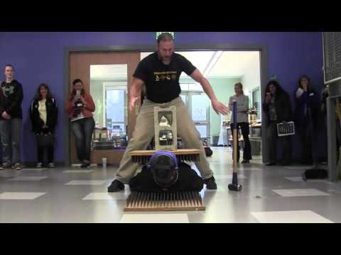 Bed of Nails - Mr. Bodwell