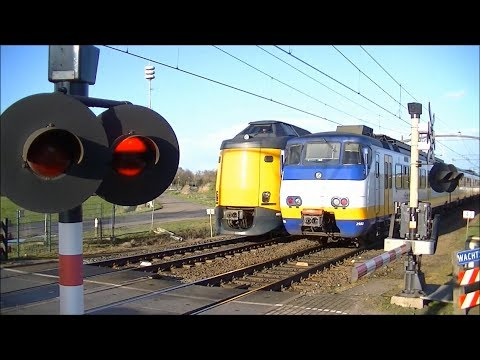 Spoorwegovergang Helmond Brandevoort // Dutch railroad crossing