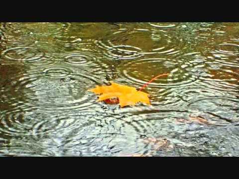 Music video Puscifer - Monsoons