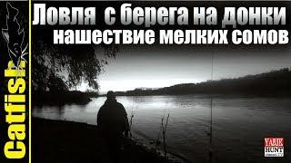 Рыбалка на донки с берега Кубань.Сом донка.Нашествие сомиков.Видео снято на Garmin  VIRB® XE