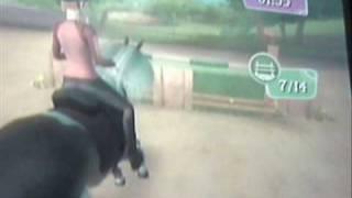 AADR Flex (Horsez 2) - Wii