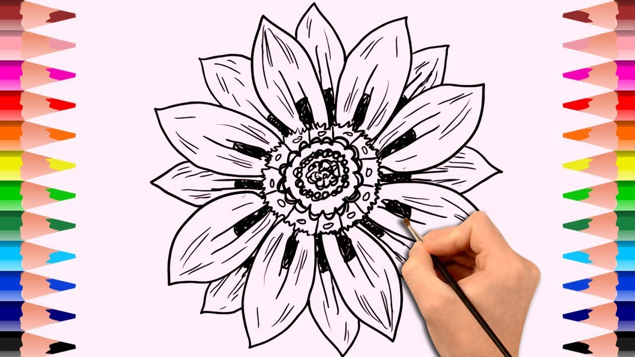 learn how to draw flowers drawing book for kids childrens