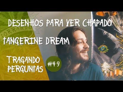 Desenhos para ver Chapado e Tangerine Dream - Tragando Perguntas #49