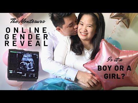 DIY Baby ONLINE GENDER REVEAL   THE MONTESURS   DIY   BABY   QUARANTINE   STAY HOME   VIRTUAL   IDEAS