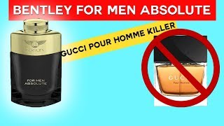 BENTLEY FOR MEN ABSOLUTE FRAGRANCE REVIEW | GUCCI POUR HOMME CLONE