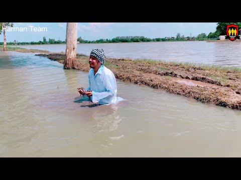 ਦੇਖੋ ਪੰਜਾਬ ਚ ਹੜਾ ਨੇ ਕੀ ਹਾਲ ਕਰਤਾ • punjab flood • ਰੋਣਾ ਆਜੁਗਾ ਦੇਖ ਕੇ• Harman Team