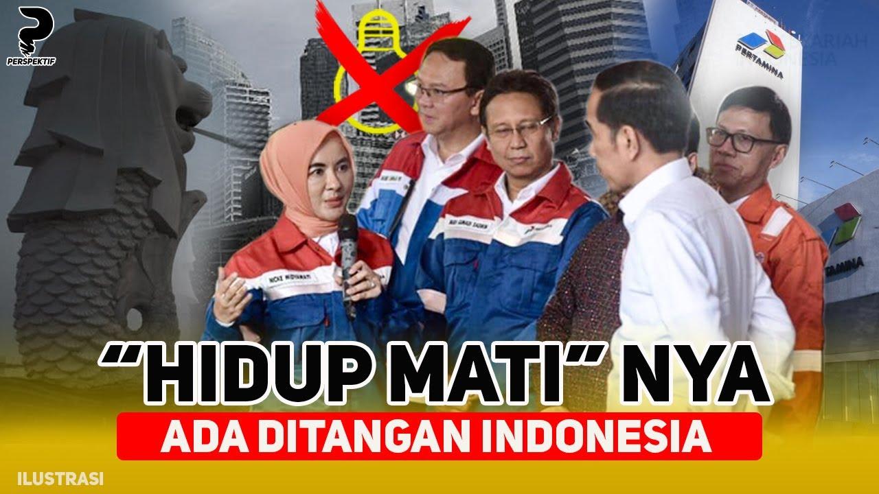 Download BERGANTUNG PADA INDONESIA, SINGAPURA TERANCAM KRISIS LISTRIK