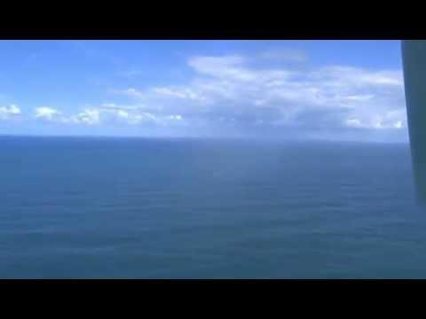 Jabi Whale watching, Richards Bay