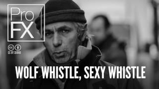 Wolf whistle, Sexy whistle sound effect ProFX Sound, Sound Effects, Free Sound Effects AQARW4iV17w