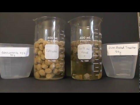 В чем отличие твердых жиров от масел?