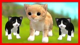 СИМУЛЯТОР Маленького КОТЕНКА #29 НОВЫЕ СКИНЫ кошка ИГРАЕТ с КОТЯТЯМИ ДЕТСКИЕ ИГРЫ