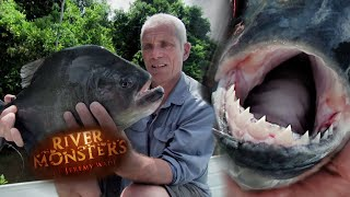 Jeremy Reels In A Black Piranha! | PIRANHA | River Monsters