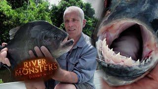 Catching a Black Piranha - River Monsters