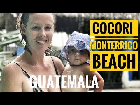 COCORI - MONTERRICO BEACH - GUATEMALA