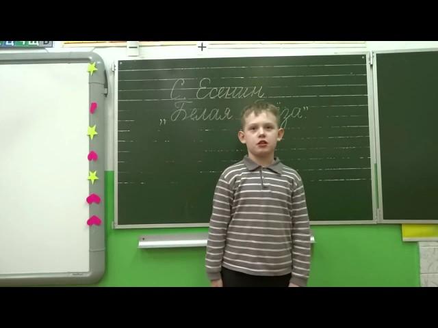 Изображение предпросмотра прочтения – ВиталийСмирнов читает произведение «Белая береза» С.А.Есенина