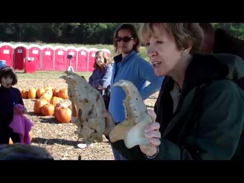 Field Trips with Sue presents Uncle Shucks Corn Maze
