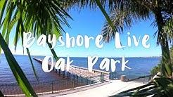 Explore Bayshore Live Oak Park Playground