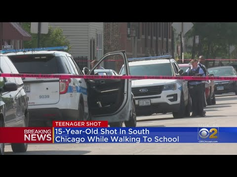 Chris Michaels - Boy, 15, Shot While Walking To School In South Chicago neighborhood.