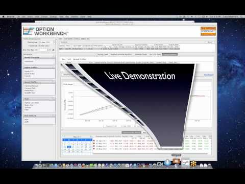 Demonstration of Advanced Options Risk Analysis with Option Workbench - Options Analysis Software
