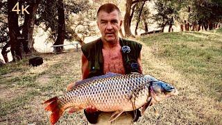 Трофейный сазан на Ахтубе Рыбалка на макуху 2021