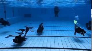 Cikini Freediving    Video Review 07 Februari 2015 фридайвинг ныряние под водой(Подводная охота, дайвинг и подводный спорт. Подпишитесь на канал http://www.youtube.com/c/AlexRaygorodskiy Вы будете иметь..., 2015-04-25T13:26:13.000Z)