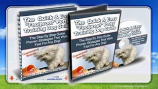Best Way To Potty Train A Puppy In 7 days WATCH NOW