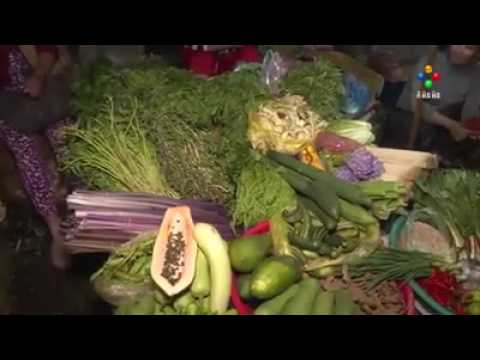 Cambodia Import Vegetable form Vietnam over 400 tons