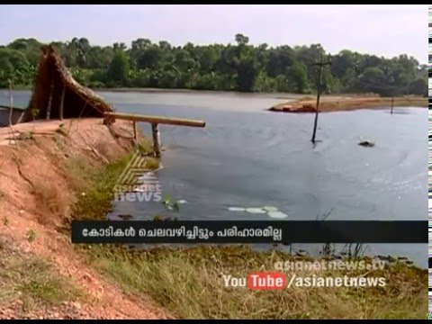 Bund collapses farmers suffered huge losses  ബണ്ട്പൊട്ടി കൃഷി നശിച്ചു