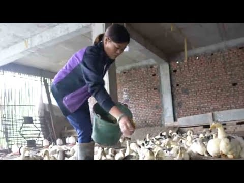 Migrant workers return home to start business