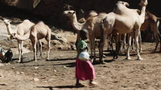 Cheru's Story: Virtual Reality Trailer VR Video | World Vision