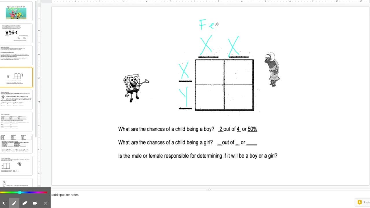 Spongebob Genetics: Punnett Square Page 2 - YouTube