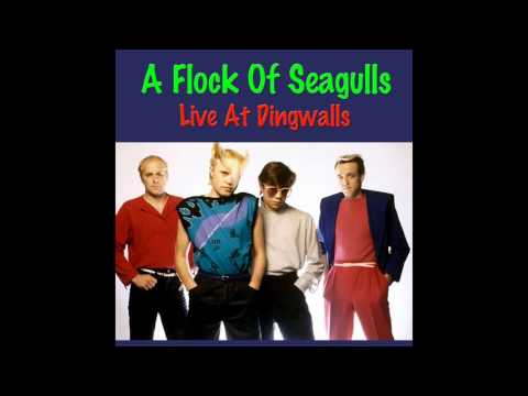 A Flock Of Seagulls Live At Dingwalls 1982 (Audio)