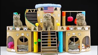 DIY Beautiful Cat House for Three Little Kittens