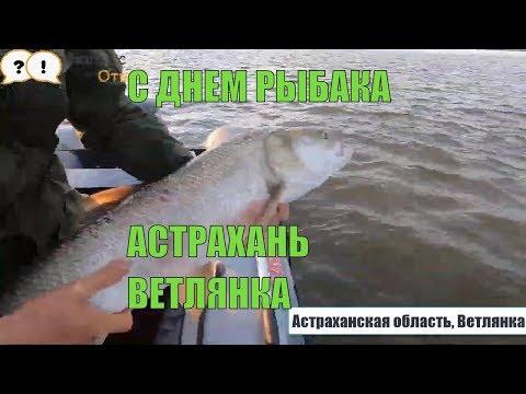 Ролик о рыбалке в Астраханской области, Ветлянка