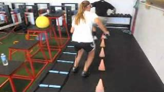 Kirstie and Clint Cone/Ladder Combination Forward/Backward Agility Mp3