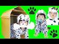 ★わんちゃんごっこ!「ダンボールで犬小屋作り~」★made doghouse in cardboard box★