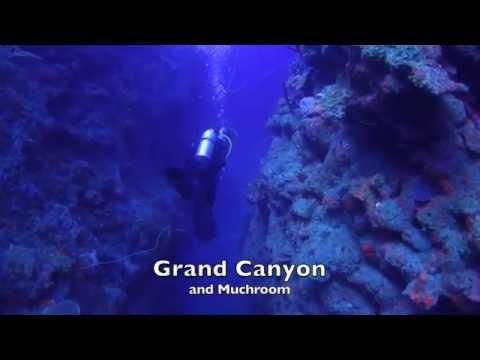 st eustache,Statia,St Eustasius, scuba diving with Scubaqua,view HD please