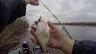 Рыбалка на поплавок с катера, лодки. Рыбалка 2016 весной в апреле.(рыбалка, поплавочная удочка, покатушки на катере, прогулка на катере, штиль, природа весной, дождь, пасмурна..., 2016-05-01T21:00:06.000Z)