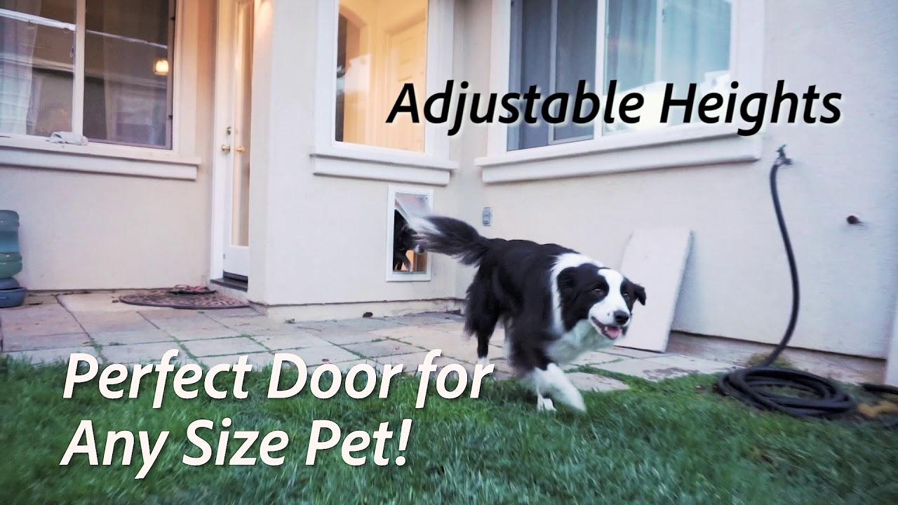 Endura Flap Pet Doors Are The Most Energy Efficient Dog Doors On