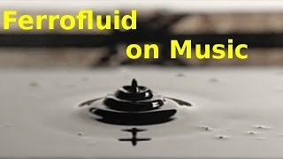 Audio Modulated Ferrofluid