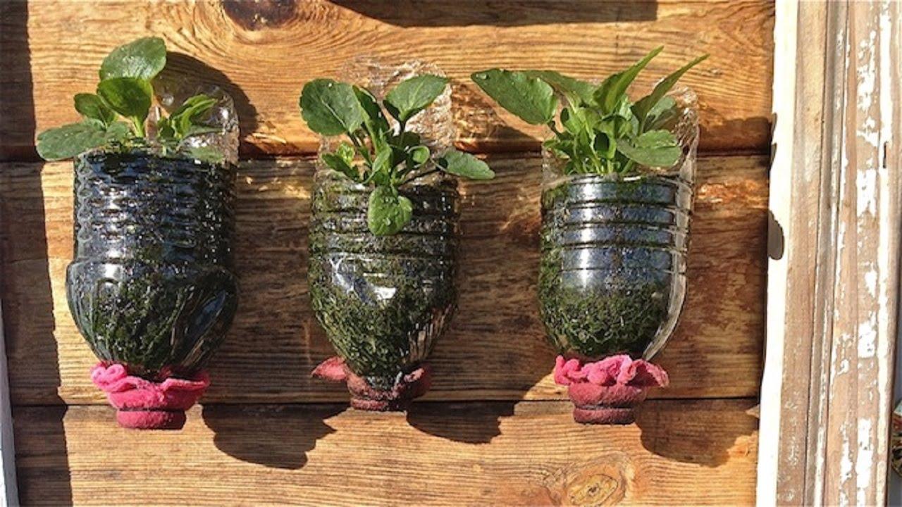 Como hacer macetas con botellas de pl stico paso a paso - Macetas para jardin vertical ...