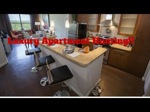 Apartment Hunting Florida | Luxury