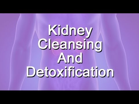 Kidney Cleansing or Detoxification
