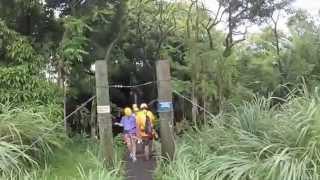 Hilo Hawaii Zipline Adventure