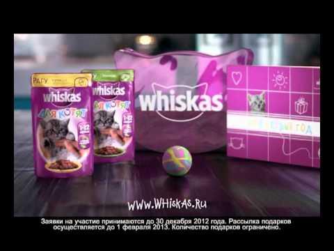 Подарки от вискас котятами 194