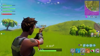 Fortnite battle royale mini gun hunt