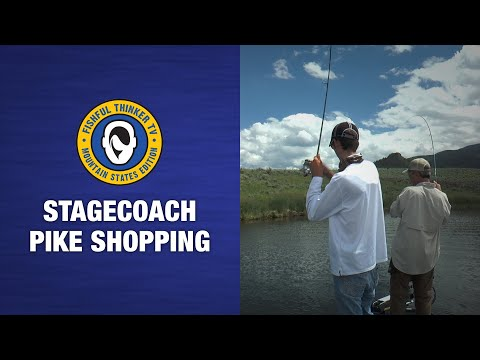 Fishful Thinker TV; Stagecoach Pike Shopping