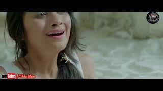 Kemiti Bhulibi Se Abhula Dina  Hrudaya Hina  Female  Official Video Song  Amrita Nayak