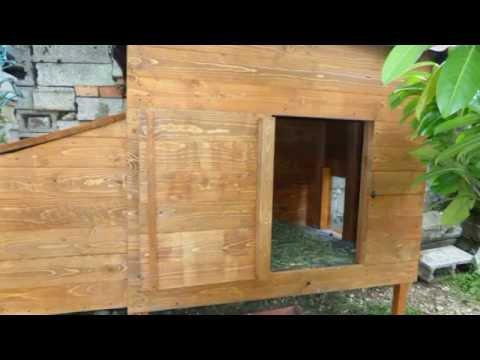 costruire un pollaio utilizzando pallet smontati youtube